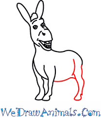 draw donkey shrek