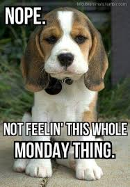 already dreading it today monday monday pinterest dreads