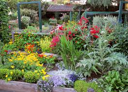 front yard vegetable garden module 11 champsbahrain com