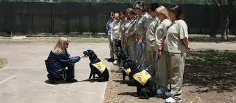 us bureau of bop federal inmates