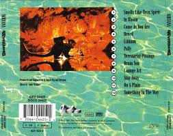 was on the back cover of nirvana s nervermind feelnumb com