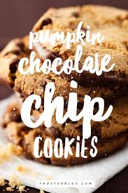 pumpkin chocolate chip cookies the best recipe for fall treats