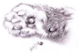 cat paws by nekomew on deviantart