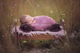 newborn props newborn props chinchilla photography family