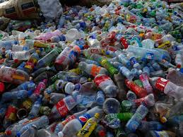 bacteria able to eat plastic bottles discovered by scientists