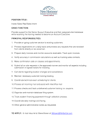 example executive resume doc 600802 sales executive resume examples resume sample 13 inside sales executive resume sales executive resume examples