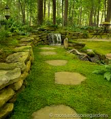 Shop Pavers U0026 Stepping Stones Growing Moss Between Stepping Stones Moss And Stone Gardens