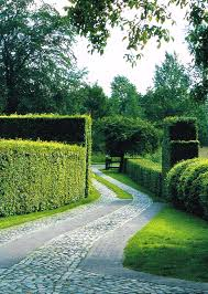 cobble driveway w hedges gardens pinterest driveways