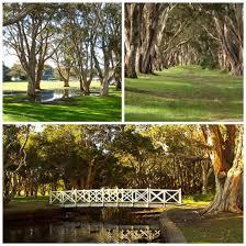 best 25 centennial park sydney ideas on pinterest sydney