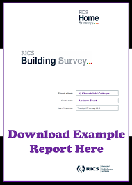 building defect report template homebuyers report or building survey