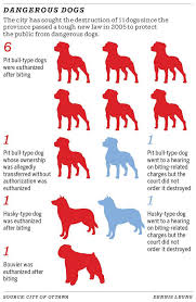 most dogs put down after biting people pets were pit bulls city