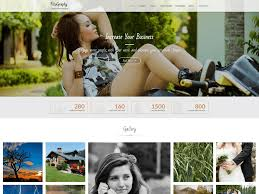 23 best free photography wordpress themes u0026 templates 2018