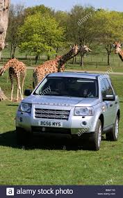 land rover safari 2018 silver land rover stock photos u0026 silver land rover stock images