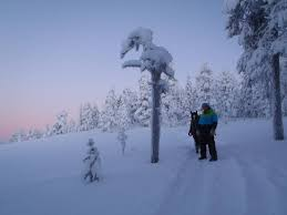snow igloo in pelkosenniemi finland