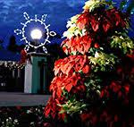 pinellas county florida florida botanical gardens annual events