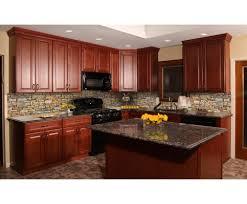 birch wood kitchen cabinets all about birch kitchen cabinets cs hardware