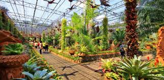 World Botanical Gardens Nong Nooch Tropical Botanical Garden One Of The Most Beautiful