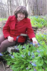 maryland native plants home u0026 garden taking a walk in tawes park capital gazette