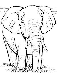 excellent elephant coloring pictures kids 9370 unknown