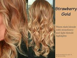 light strawberry blonde hair color chart golden reddish brown hair color fashion blog