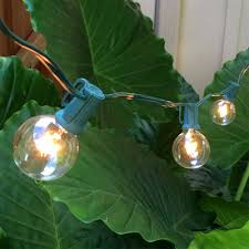 Commercial Patio String Lights by G50 Globe String Lights Set Clear C7 Patio Lights