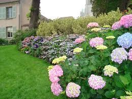 wonderful colorfull unique design landscape beautiful garden grass