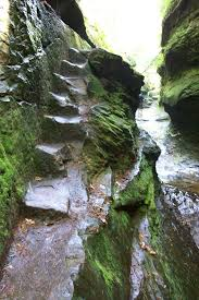 Clifty Falls State Park Map by Turkey Run State Park Is Less Than A 90 Minute Drive From