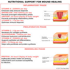 how dietary protein intake promotes wound healing wound care advisor