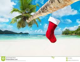 christmas sock on palm tree at tropical ocean beach stock photo