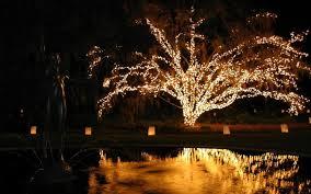 Saluda Shoals Lights 11 Holiday Light Festivals In South Carolina