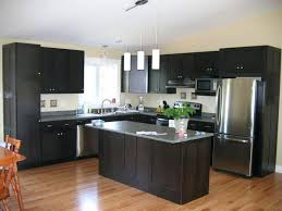 best kitchen paint colors oak cabinets best kitchen cabinet color ideas images cabinets info
