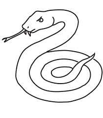 coloring page of a snake funycoloring
