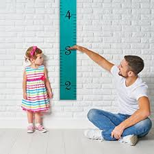hanging picture height amazon com growth chart art hanging wooden height growth chart