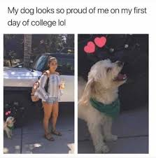First Day Of College Meme - dopl3r com memes my dog looks so proud of me on my first day of
