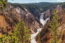 yellowstone national park america
