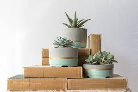 succulent planters mint gold concrete succulent planters set of 3 southern reclaim co