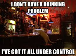 Drinking Problem Meme - i don t have a drinking problem i ve got it all under control