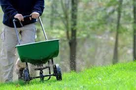fall lawn maintenance bob vila