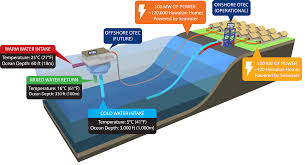Energy Flow In Plants Concept Map World Energy Resources Marine Energy 2016