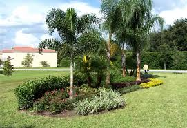 residential landscaping orlando residential lawn maintenance