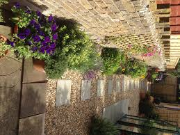 Done Deal Patio Slabs Gravel Patio Query Gardening Forum Gardenersworld Com