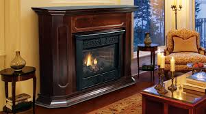 contemporary living room design with black majestic natural gas