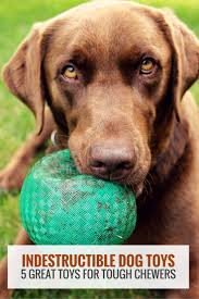best 25 tough dog toys ideas on pinterest homemade dog toys