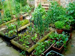 Edible Garden Ideas Ewa In The Garden 24 Beautiful Photos Of Edible Landscape Ideas