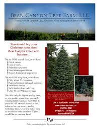 Helms Christmas Tree Farm - bear canyon tree farm farm history charley u0026 dottie burton