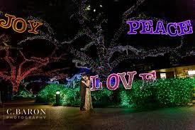 zoo lights houston 2017 dates houston engagement photographer the houston zoo lights megan