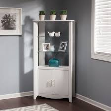 Tall Storage Cabinet With Doors And Shelves by Aero Tall Library Storage Cabinet With Doors Free Shipping Today