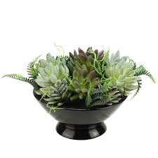 Desk Plant Northlight Artificial Mixed Succulent Desk Top Plant In A Bowl Pot