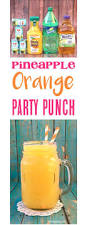 best 25 fall punch recipes ideas only on pinterest fall drinks