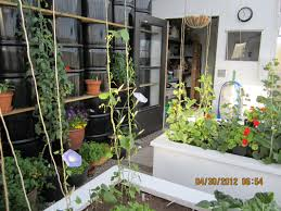 student greenhouse projects